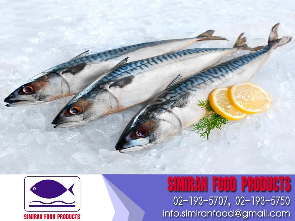 ปลาซาบะ นอร์เวย์ (แช่แข็ง) Size 400-600g/pcs
